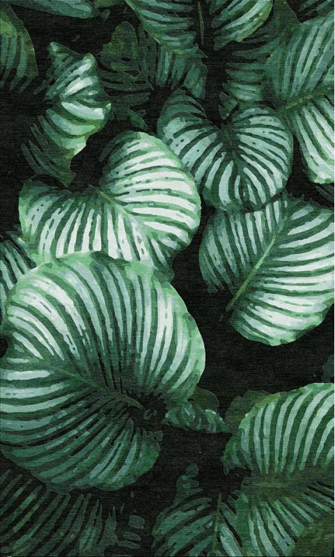 "Teppich ""Calathea Orbifolia"""